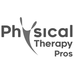 Phyical Therapy SEO Branding Case Study